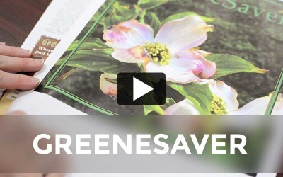 GreeneScene Magazine